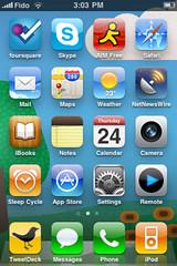 Home screen on phone